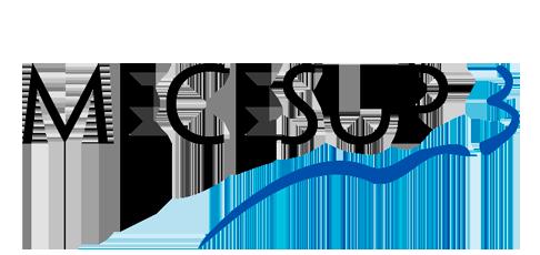Logo Mecesup